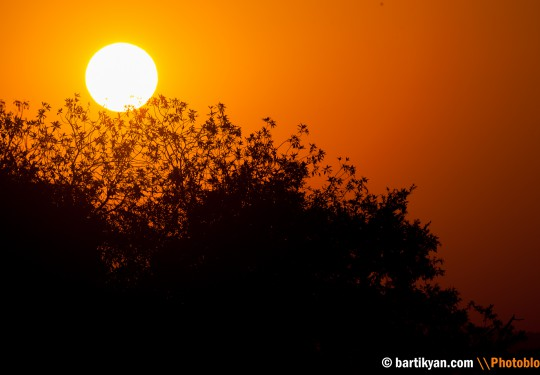 African sunrise, Kruger National Park, South Africa